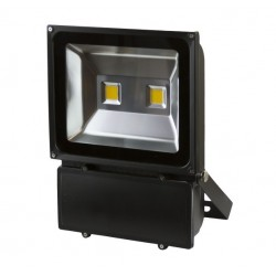 Spectrum NOCTI 50w Floodlight + Sensor