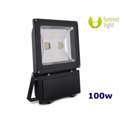 Forever Light IP65 100w CW Floodlight