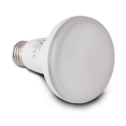 E27 R80 LED