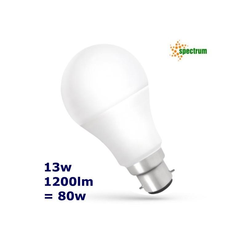 B22 13w LED Bulb