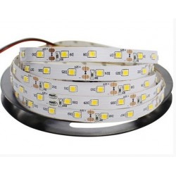 24v- Professional grade Strip 12w/m - Waterproof