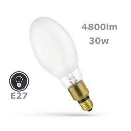 E27 30w Parisienne Park Lamp